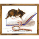 Kitten on the Book