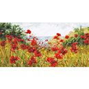 Clifftop  Poppies